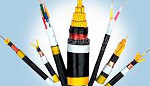 铠装电缆2
